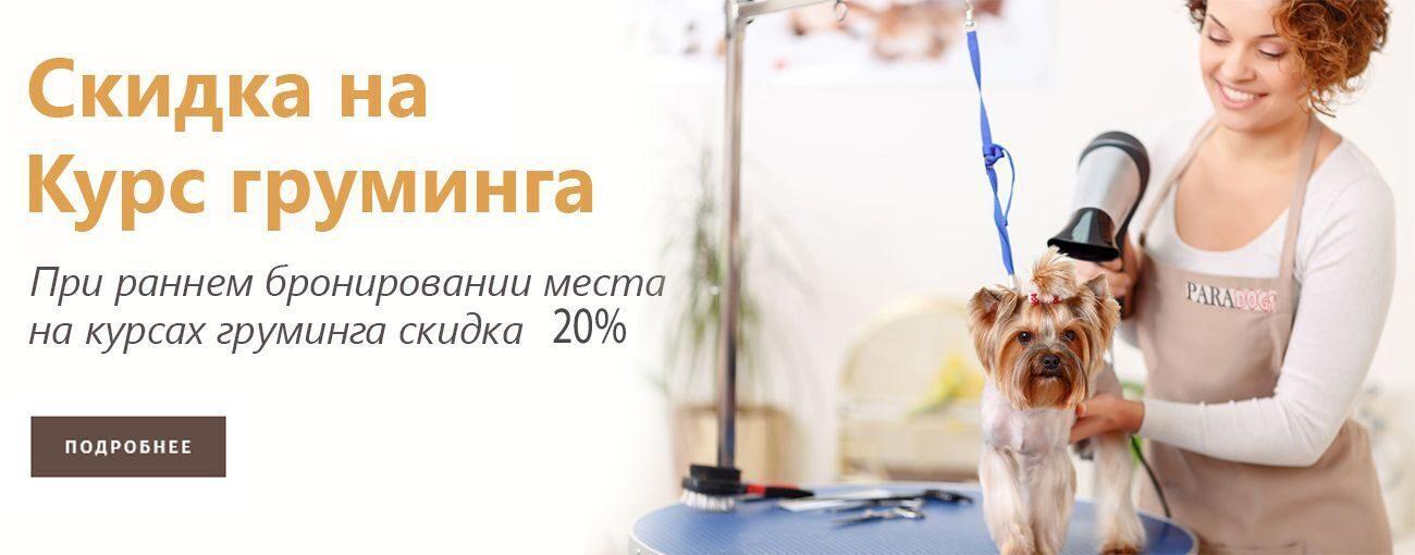 kursy_gruminga_20